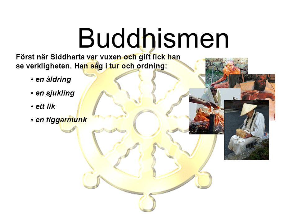 Buddhismen Först när Siddharta var vuxen och gift fick han se verkligheten. Han såg i tur och ordning: