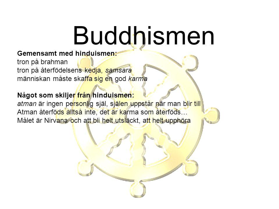 Buddhismen Gemensamt med hinduismen: tron på brahman