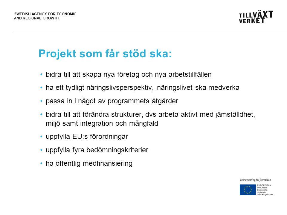 Projekt som får stöd ska: