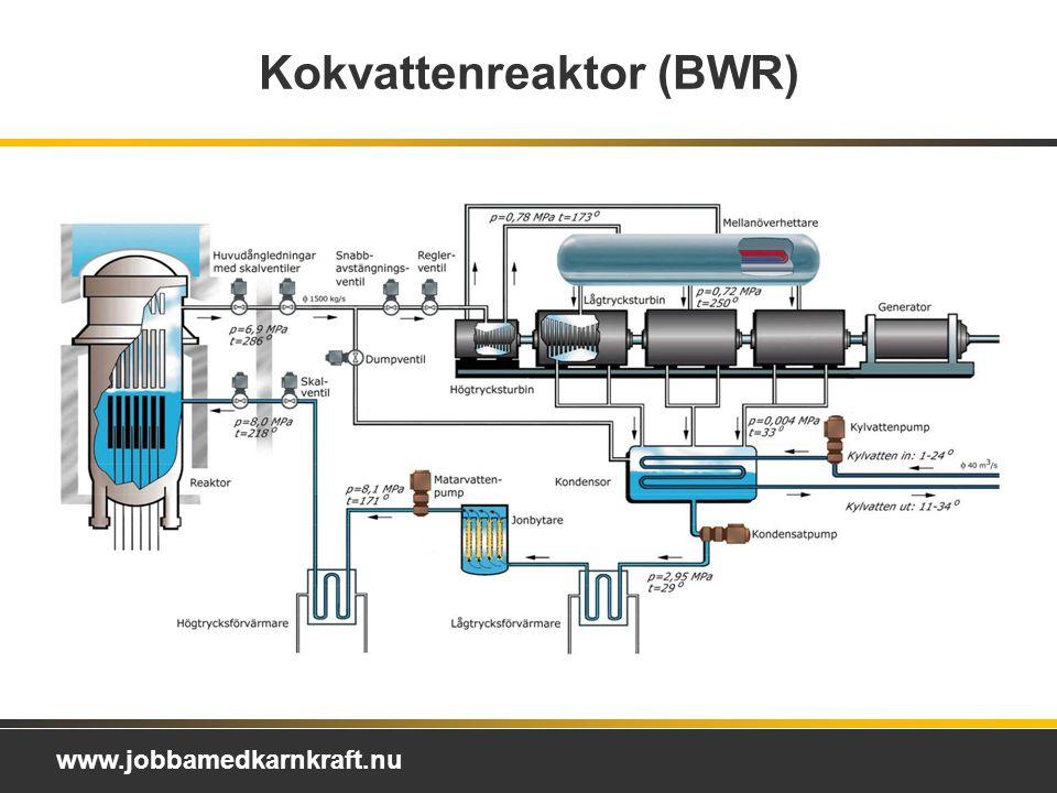 Kokvattenreaktor (BWR)