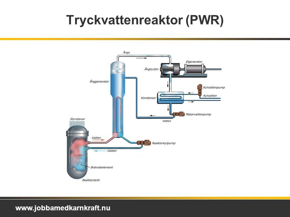 Tryckvattenreaktor (PWR)