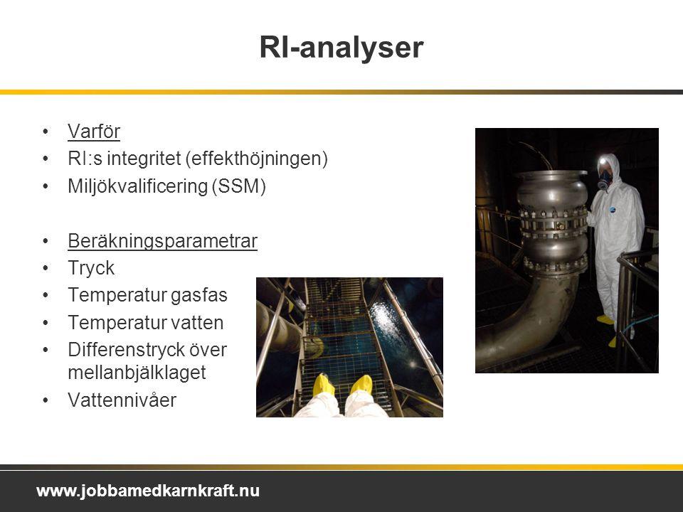 RI-analyser Varför RI:s integritet (effekthöjningen)