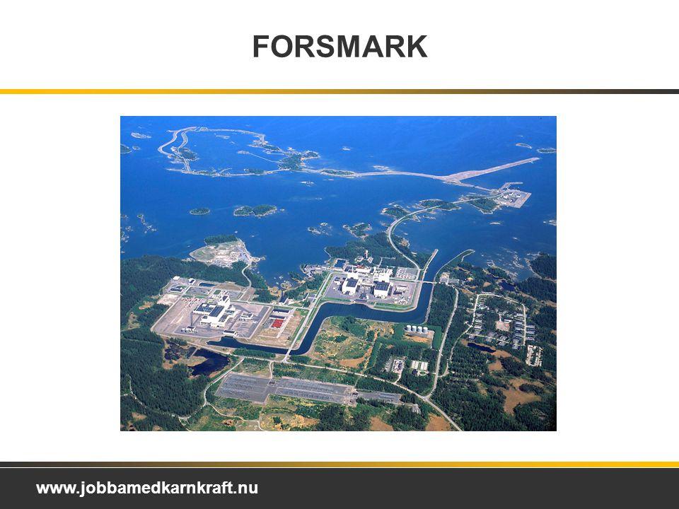 FORSMARK Forsmarks Kraftgrupp AB Ägare:
