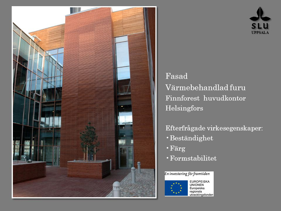 Fasad Värmebehandlad furu Finnforest huvudkontor Helsingfors