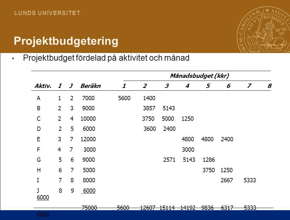 Projektbudgetering Projektbudget fördelad på aktivitet och månad