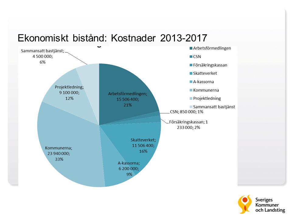 Ekonomiskt bistånd: Kostnader 2013-2017