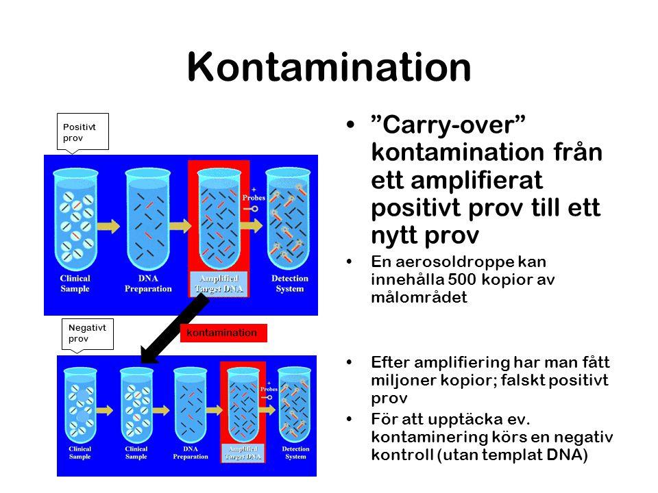 Kontamination Carry-over kontamination från ett amplifierat positivt prov till ett nytt prov.