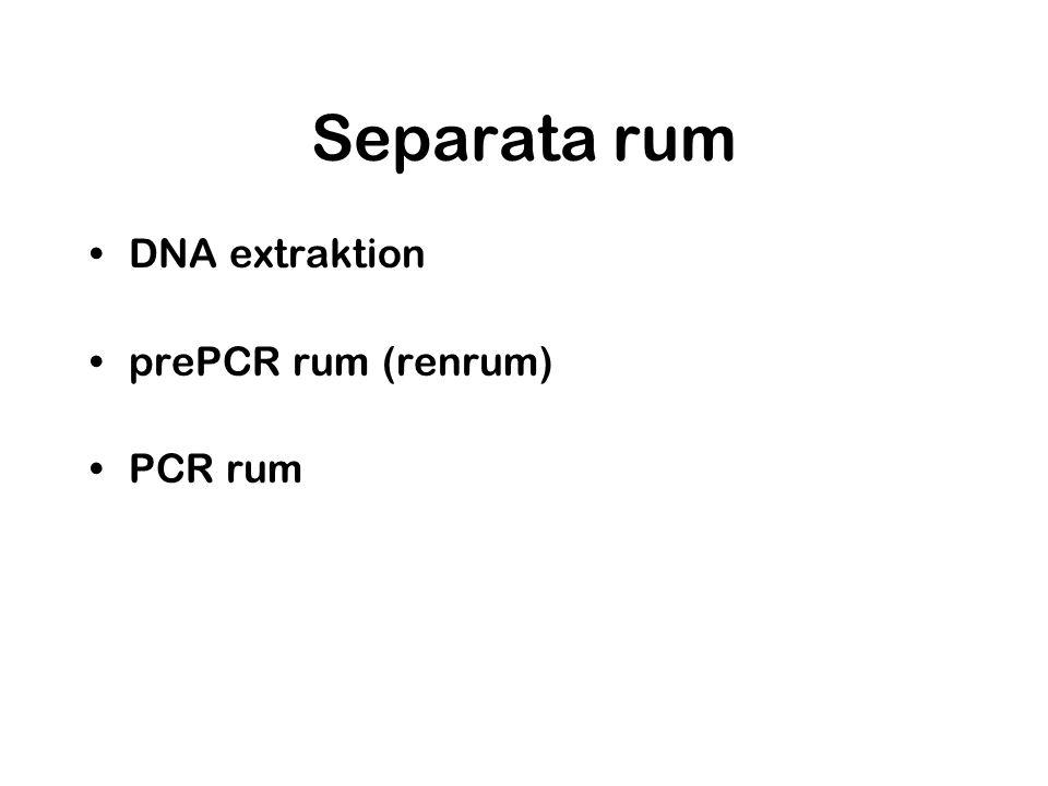 Separata rum DNA extraktion prePCR rum (renrum) PCR rum