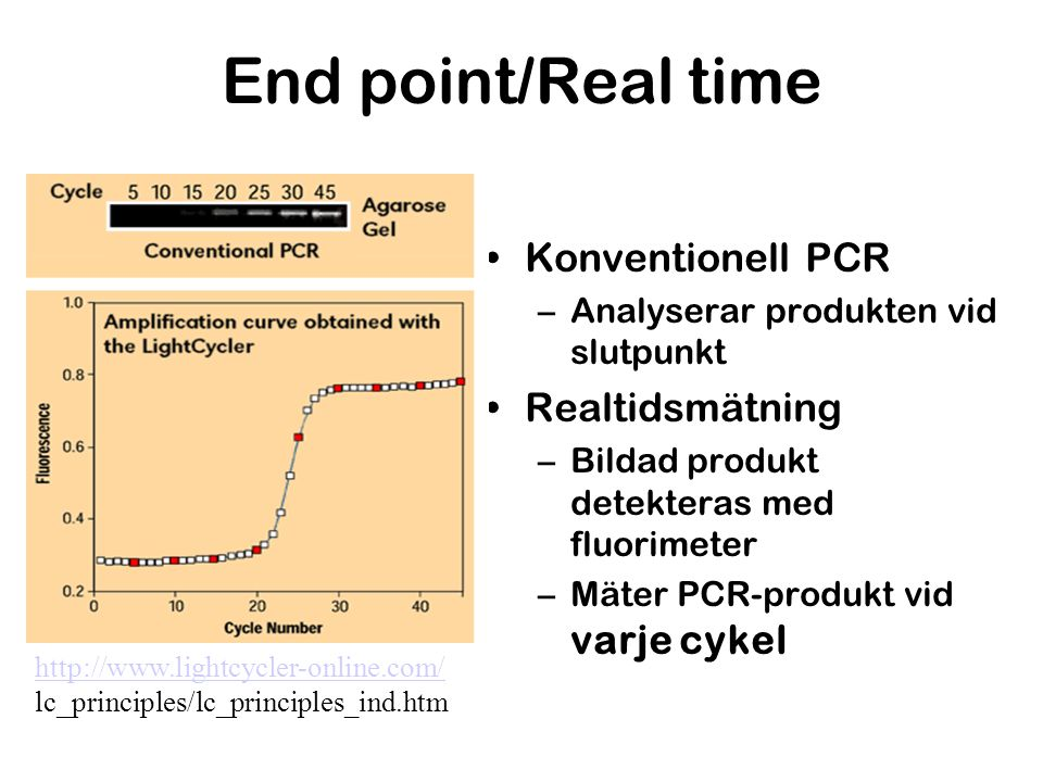 End point/Real time Konventionell PCR Realtidsmätning