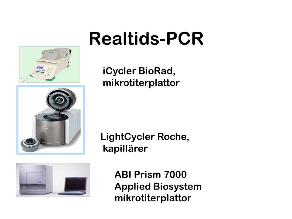 Realtids-PCR iCycler BioRad, mikrotiterplattor LightCycler Roche,