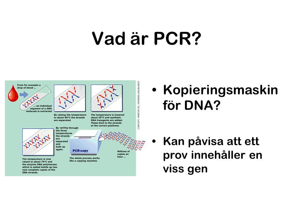 Vad är PCR Kopieringsmaskin för DNA