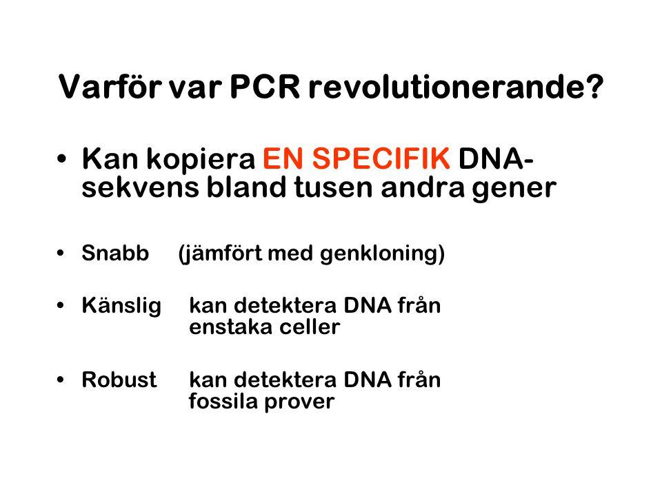 Varför var PCR revolutionerande