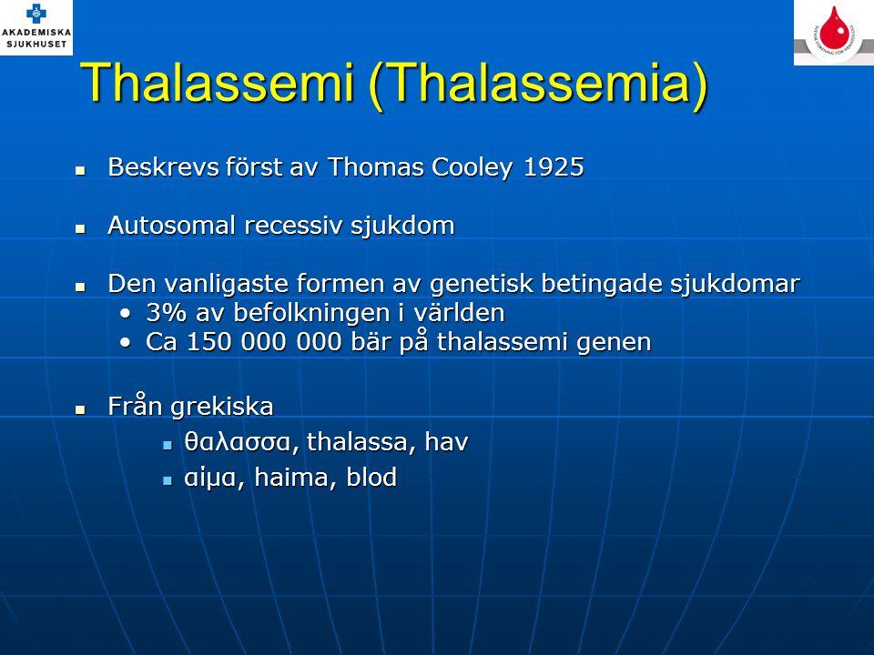 Thalassemi (Thalassemia)