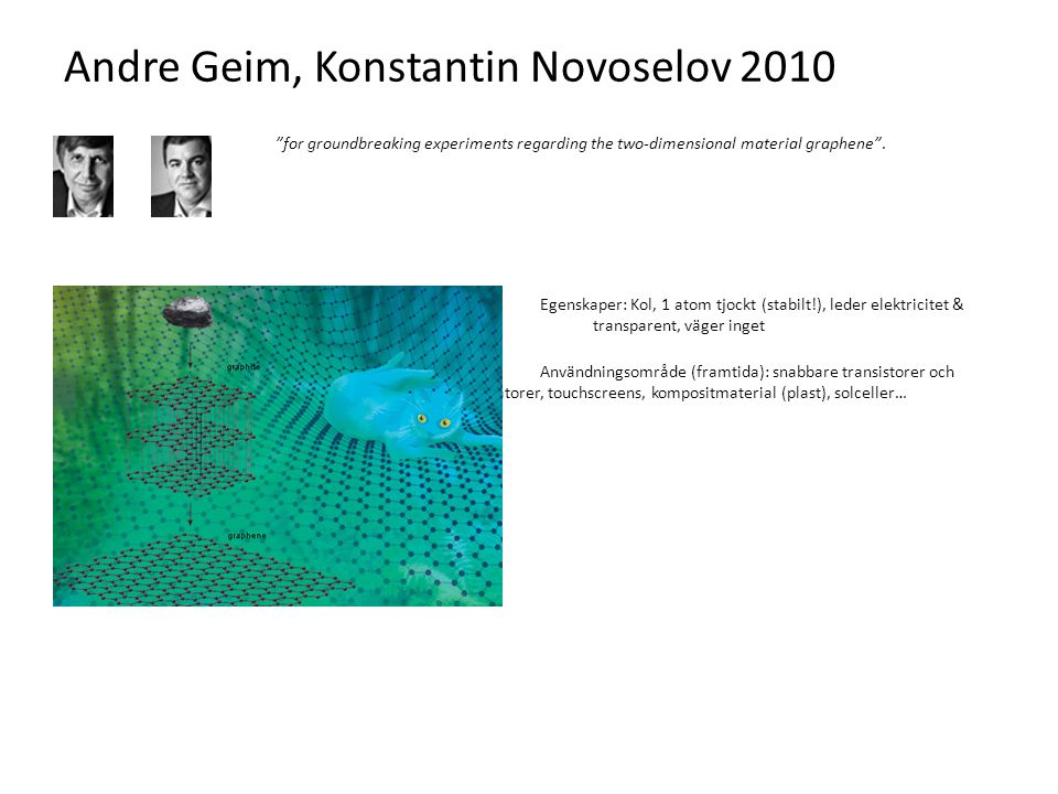 Andre Geim, Konstantin Novoselov 2010