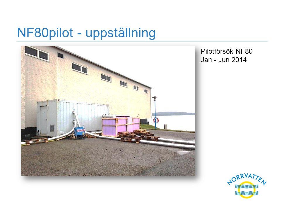 NF80pilot - uppställning