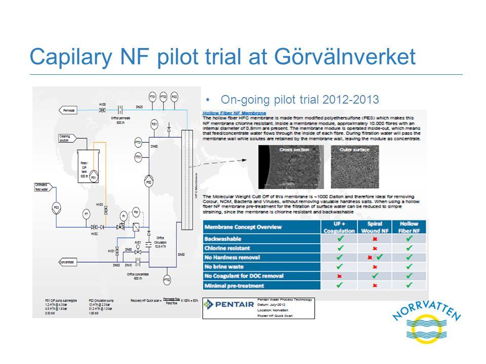Capilary NF pilot trial at Görvälnverket