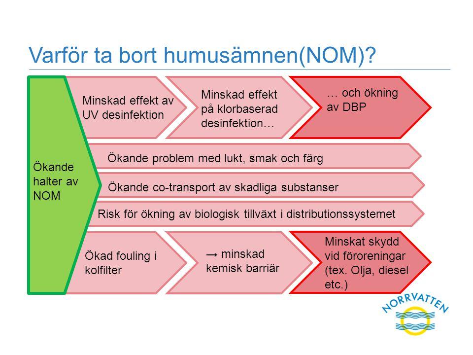 Varför ta bort humusämnen(NOM)