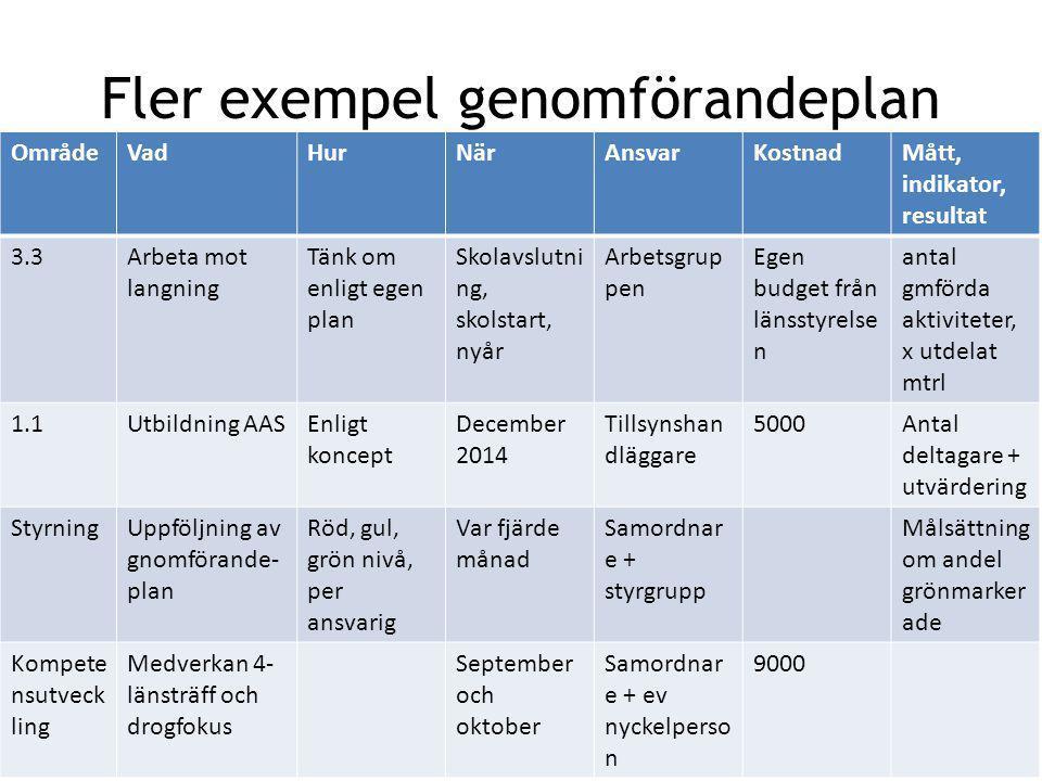 Fler exempel genomförandeplan