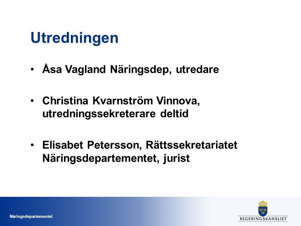 Utredningen Åsa Vagland Näringsdep, utredare