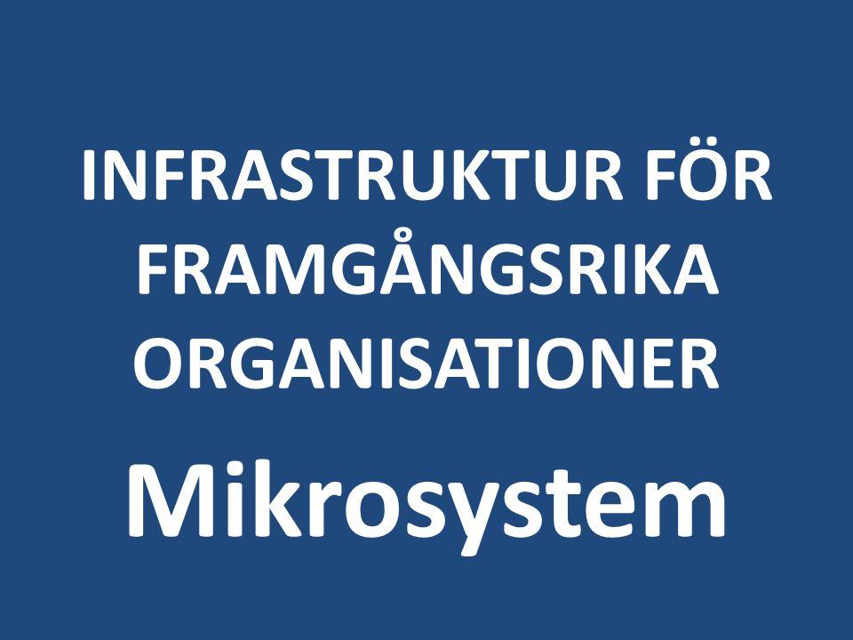 INFRASTRUKTUR FÖR FRAMGÅNGSRIKA ORGANISATIONER
