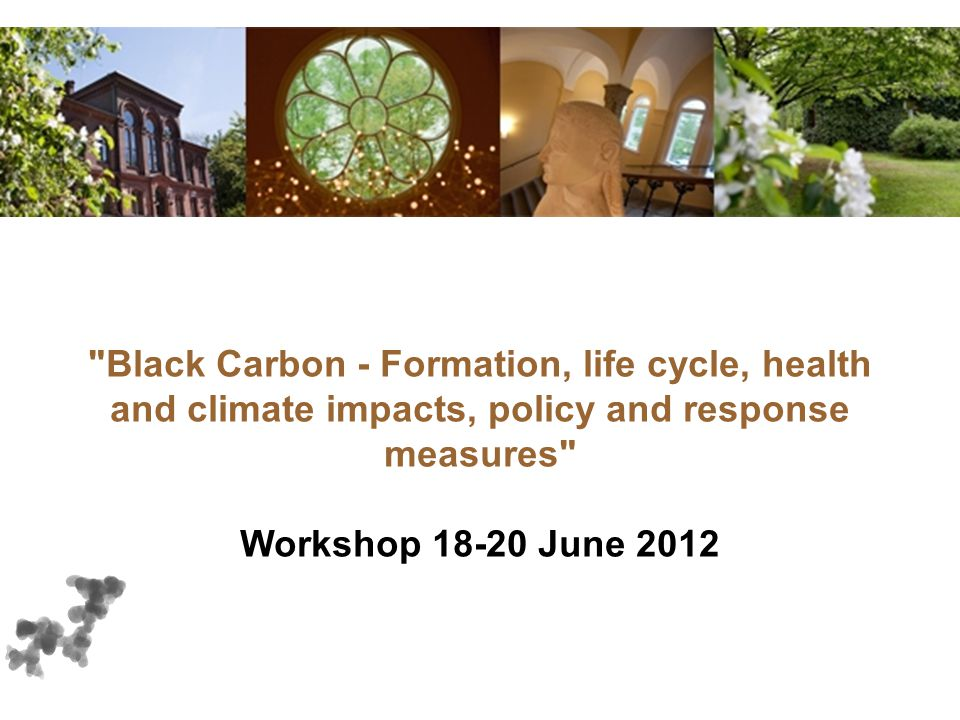 Black Carbon - Formation, life cycle, health and climate impacts, policy and response measures