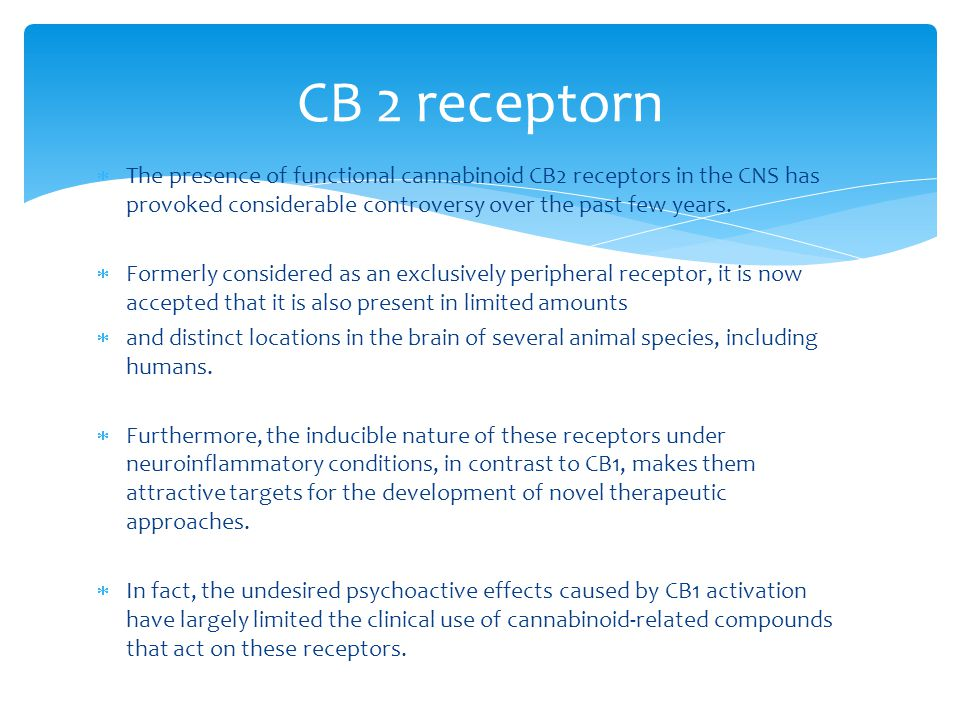 CB 2 receptorn The presence of functional cannabinoid CB2 receptors in the CNS has provoked considerable controversy over the past few years.