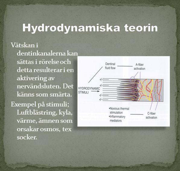 Hydrodynamiska teorin