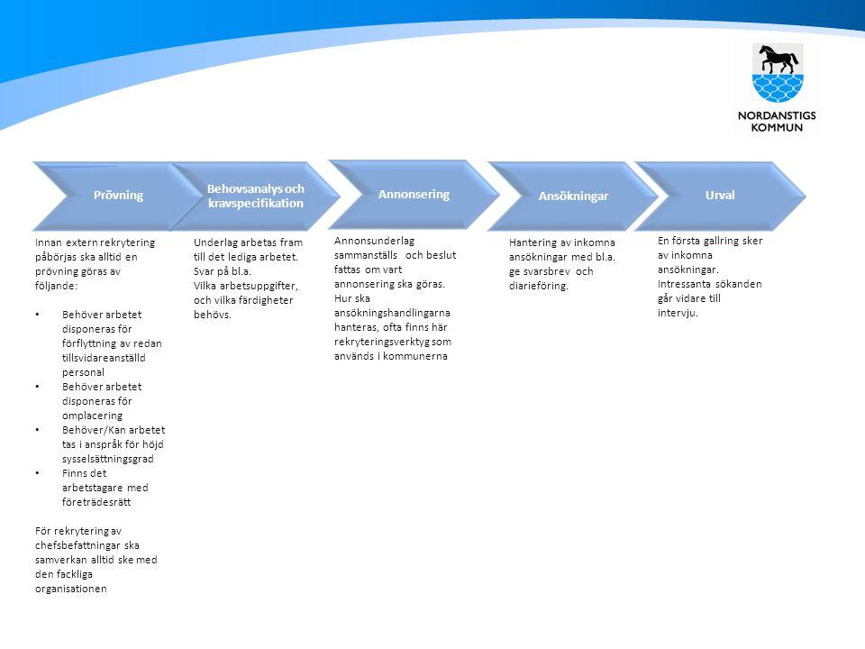 Behovsanalys och kravspecifikation