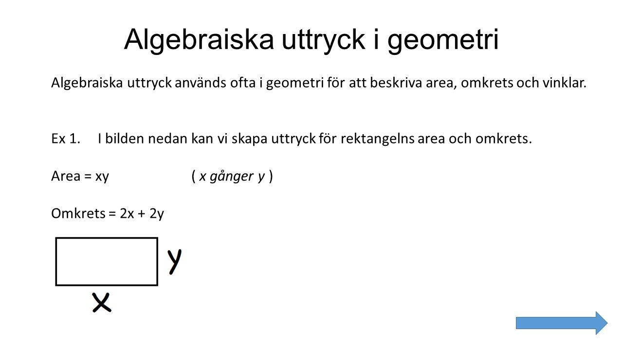 Algebraiska uttryck i geometri