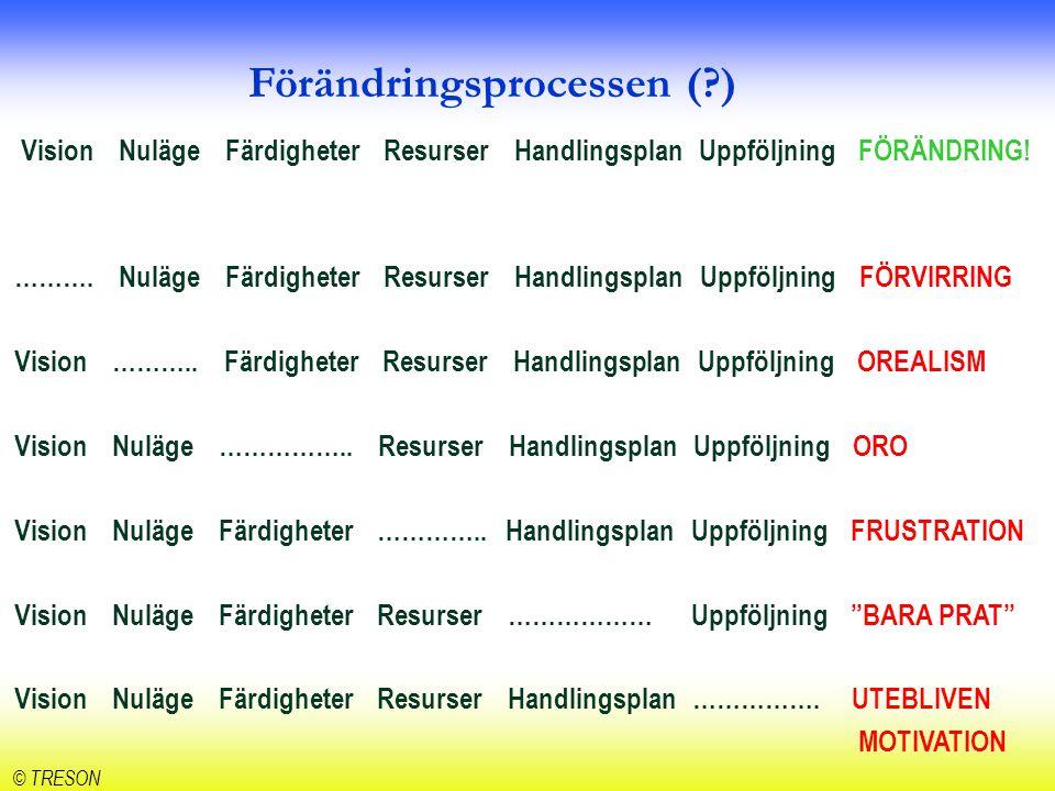 Förändringsprocessen ( )