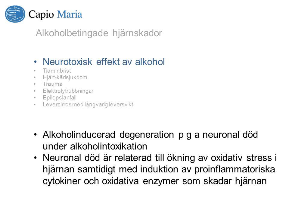 Alkoholbetingade hjärnskador