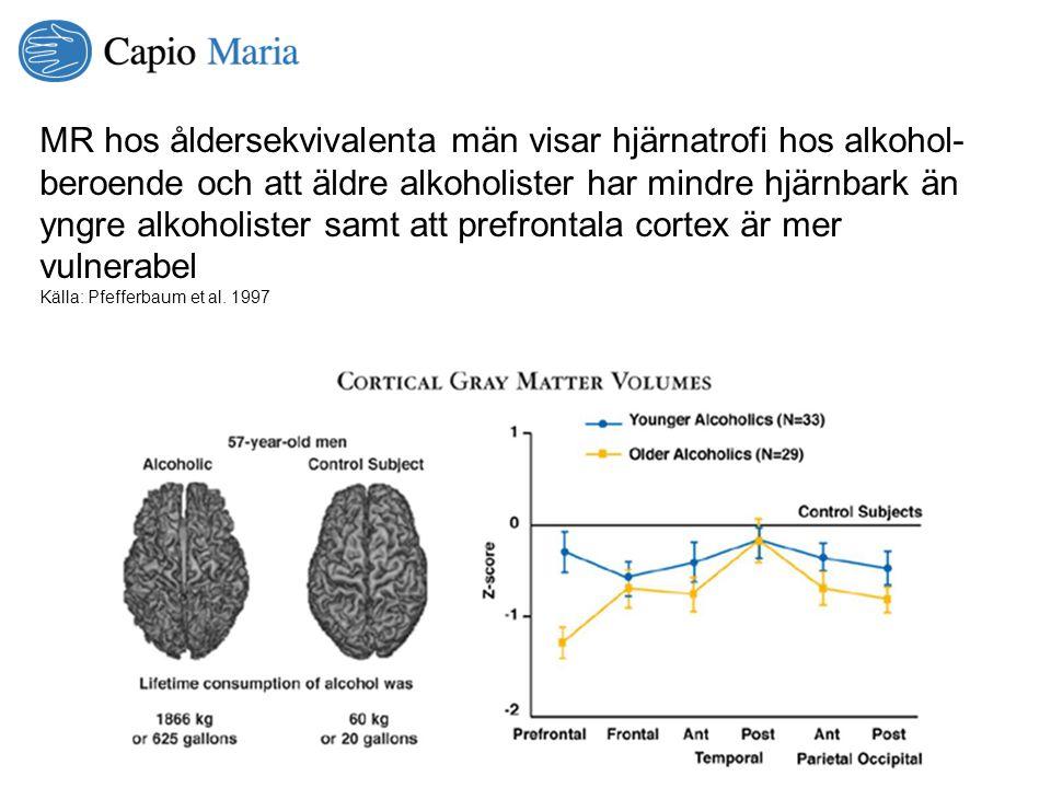 MR hos åldersekvivalenta män visar hjärnatrofi hos alkohol-beroende och att äldre alkoholister har mindre hjärnbark än yngre alkoholister samt att prefrontala cortex är mer vulnerabel
