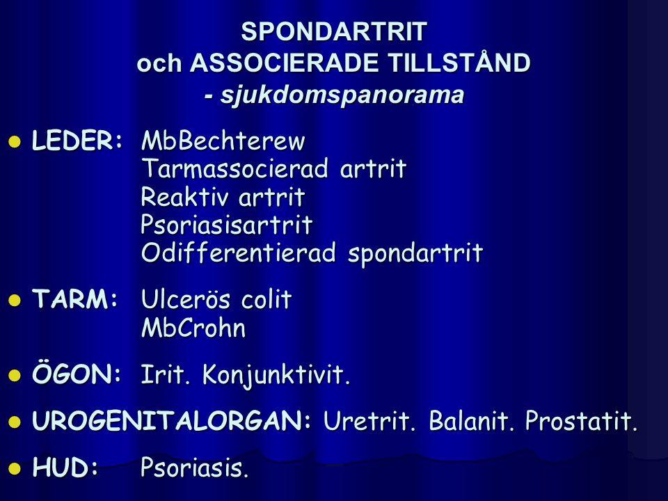 SPONDARTRIT och ASSOCIERADE TILLSTÅND - sjukdomspanorama