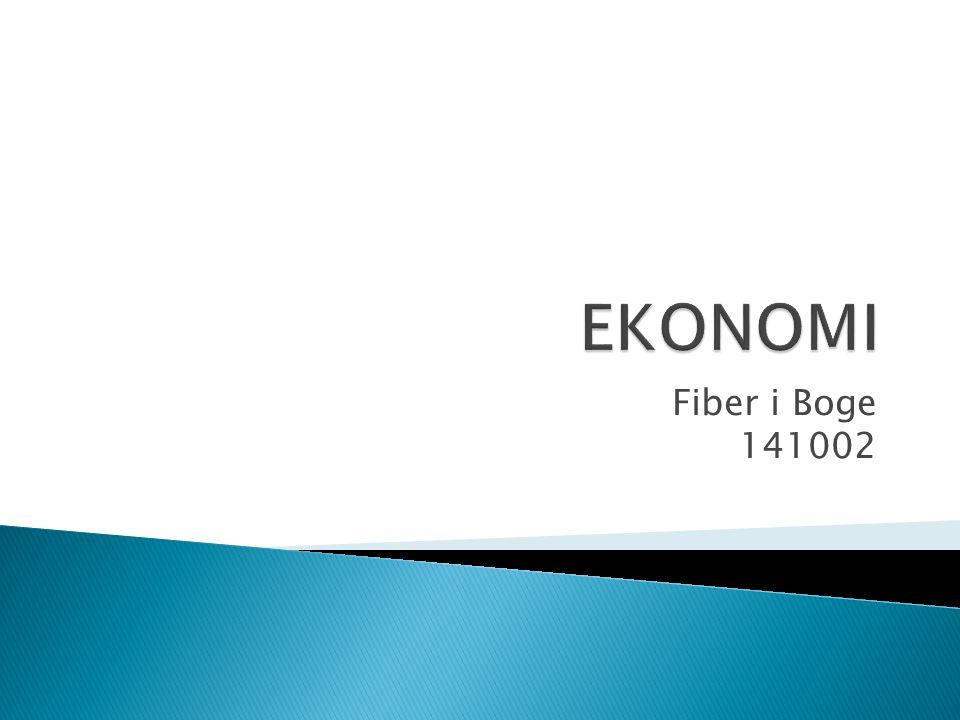 EKONOMI Fiber i Boge 141002