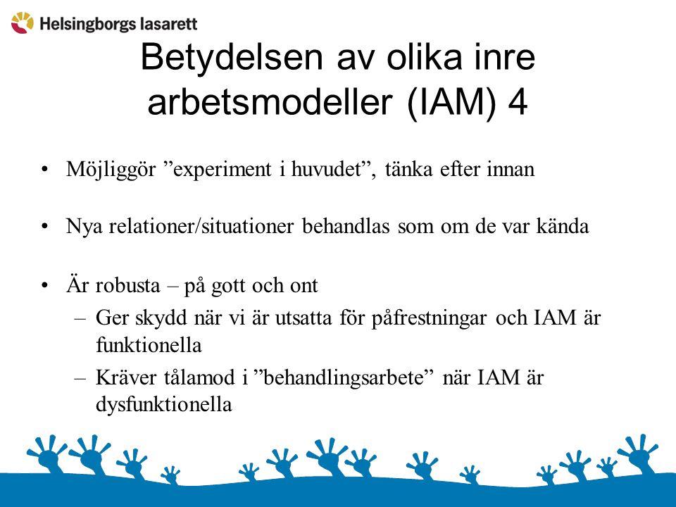 Betydelsen av olika inre arbetsmodeller (IAM) 4