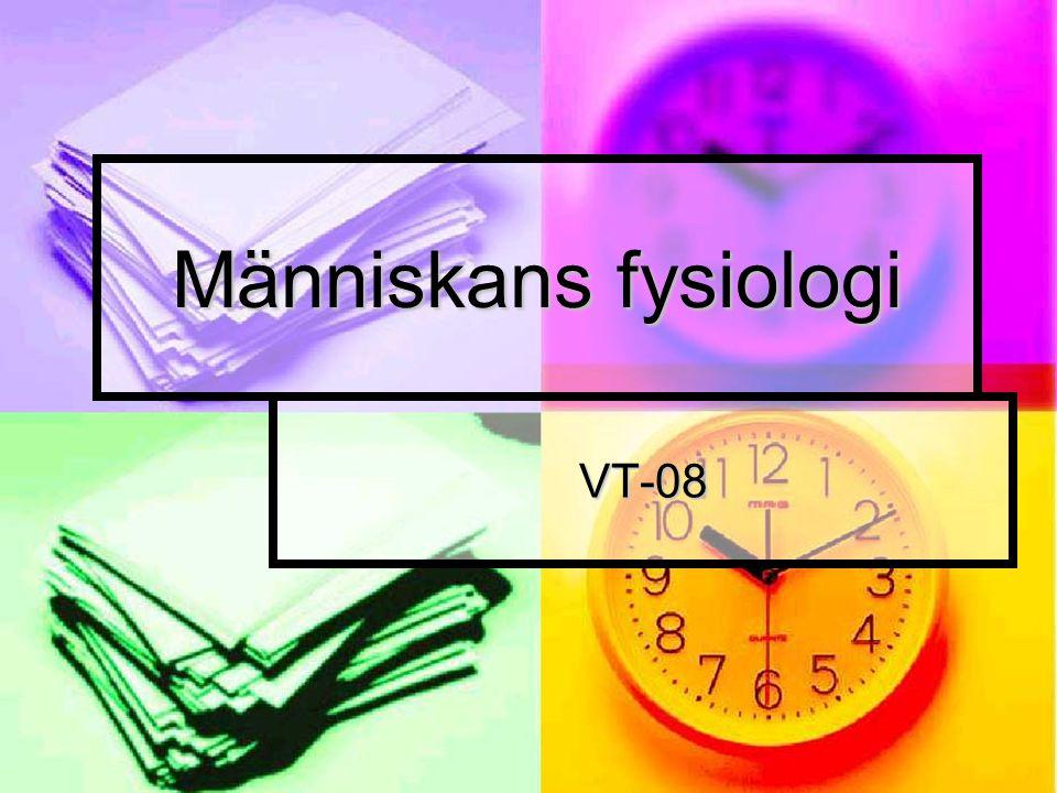 Människans fysiologi VT-08