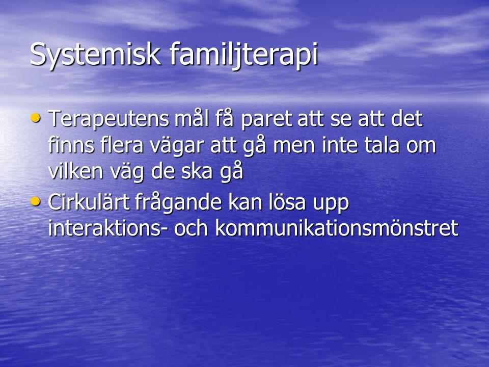 Systemisk familjterapi