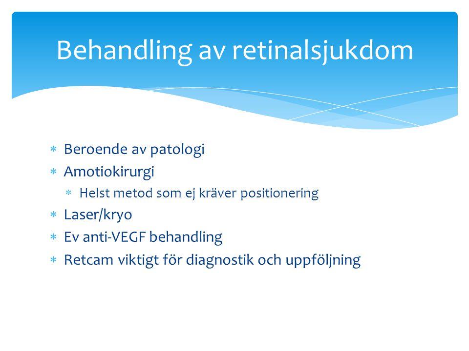 Behandling av retinalsjukdom