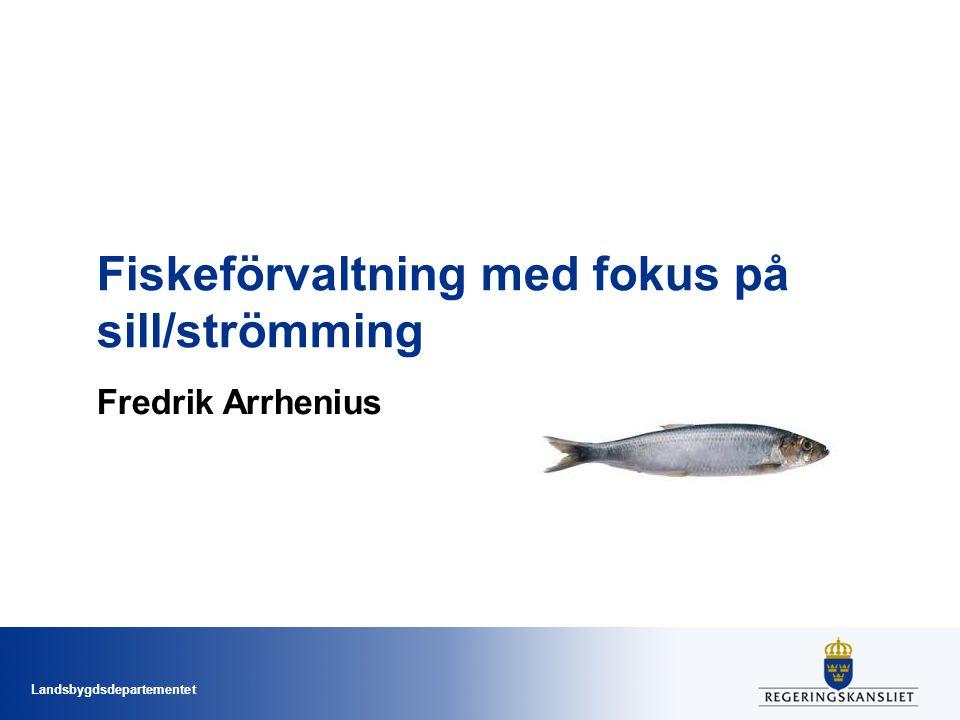 Fiskeförvaltning med fokus på sill/strömming