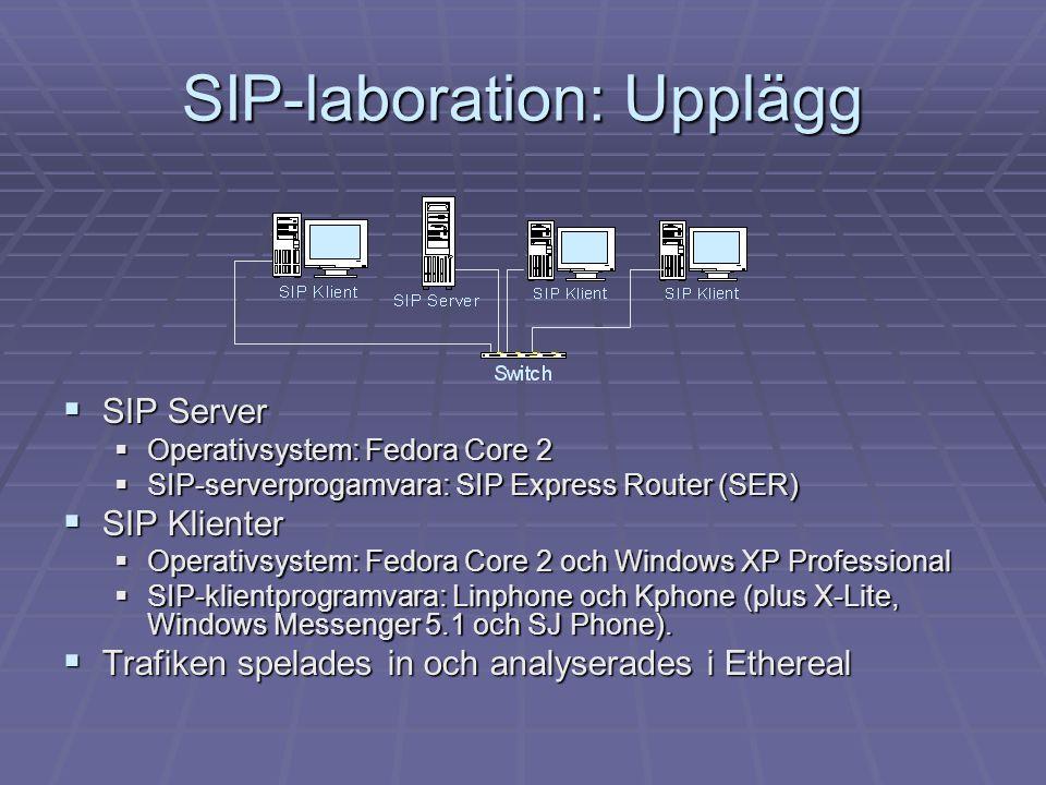 SIP-laboration: Upplägg