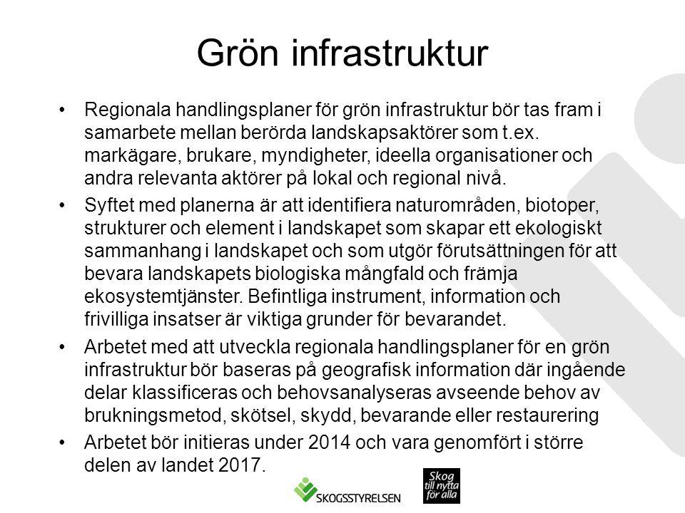 Grön infrastruktur