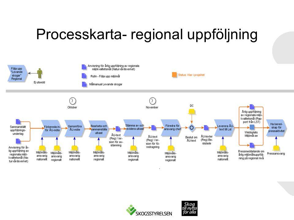 Processkarta- regional uppföljning