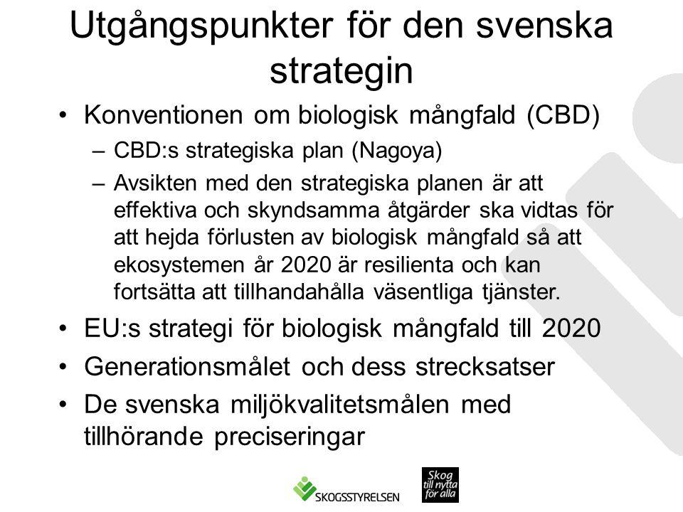 Utgångspunkter för den svenska strategin