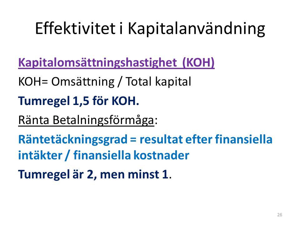 Effektivitet i Kapitalanvändning