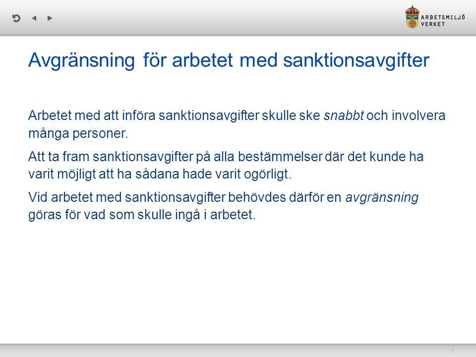 Avgränsning för arbetet med sanktionsavgifter