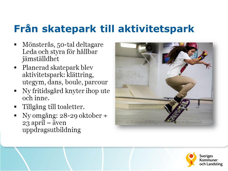 Från skatepark till aktivitetspark