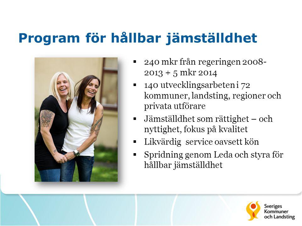 Program för hållbar jämställdhet