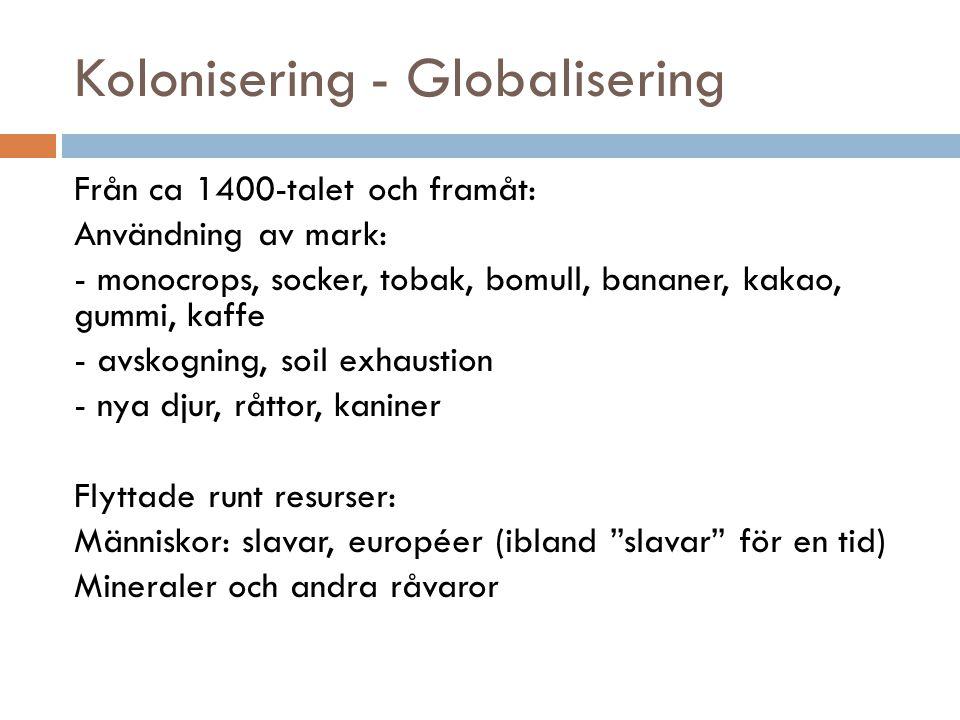Kolonisering - Globalisering