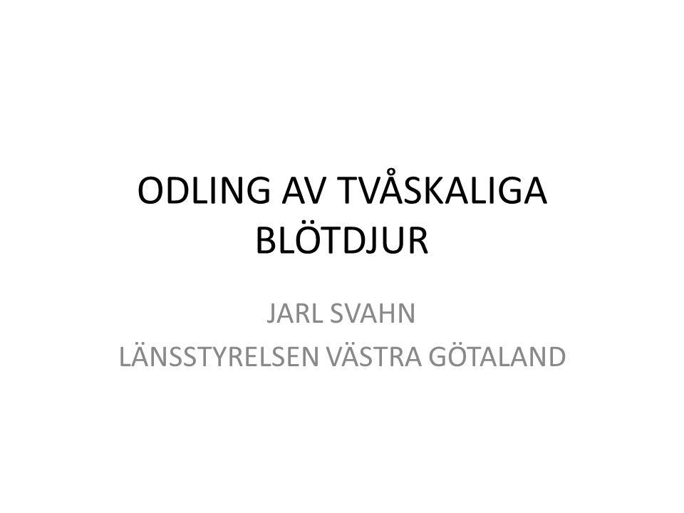 ODLING AV TVÅSKALIGA BLÖTDJUR