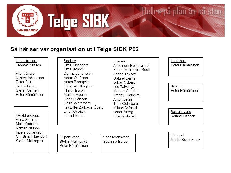 Så här ser vår organisation ut i Telge SIBK P02